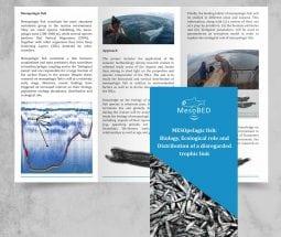 Διαφημιστικά Φυλλάδια τρίπτυχο Α4 2 όψεων σε velvet 150gr